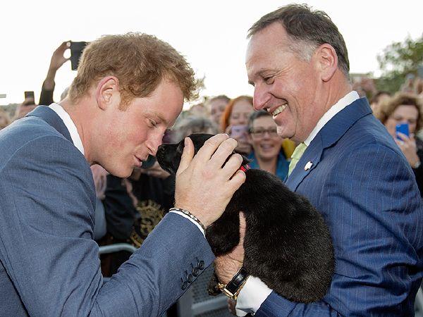 نيوزيلاندا تقدم التحية للأمير هاري بطريقتهم التقليدية (4)