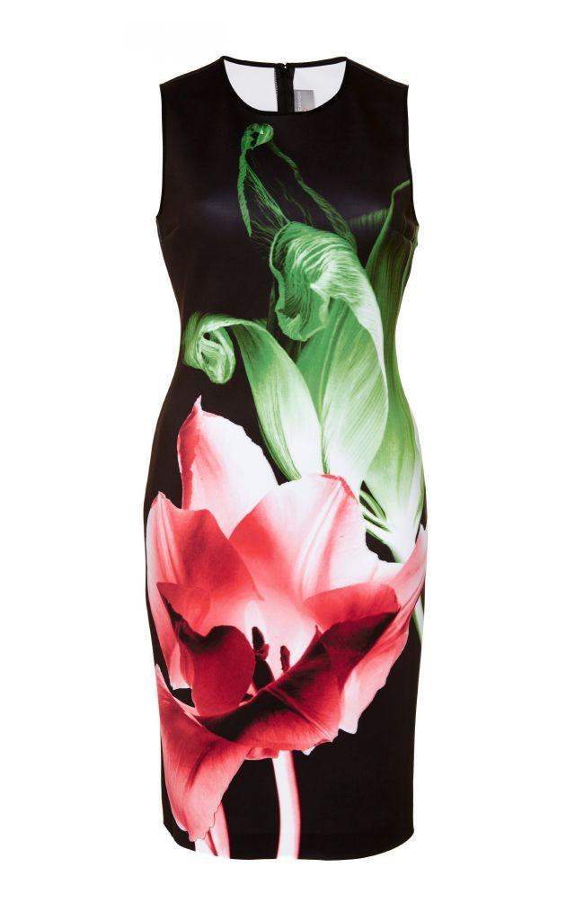 resized_Clover Canyon SILENT FLOWER DRESS $275