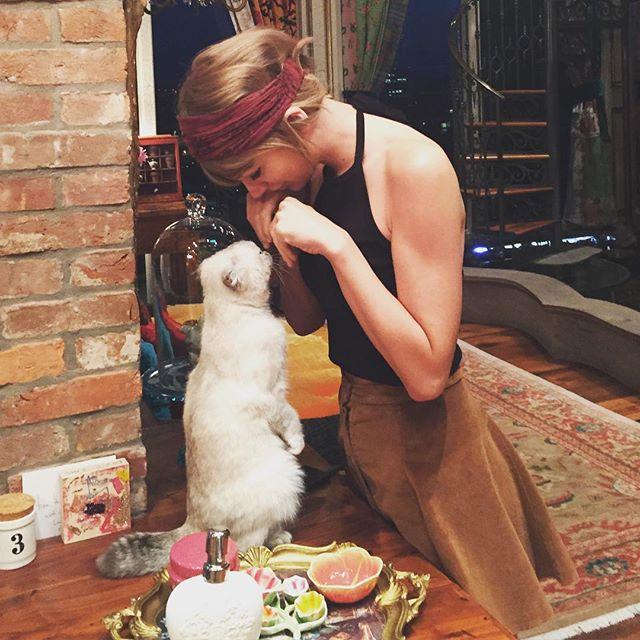 تايلورسويفت وقطتها