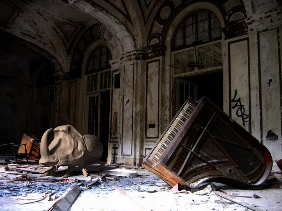 Beetle abandoned house