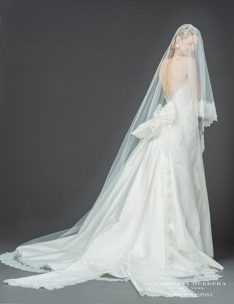 jacqueline veil