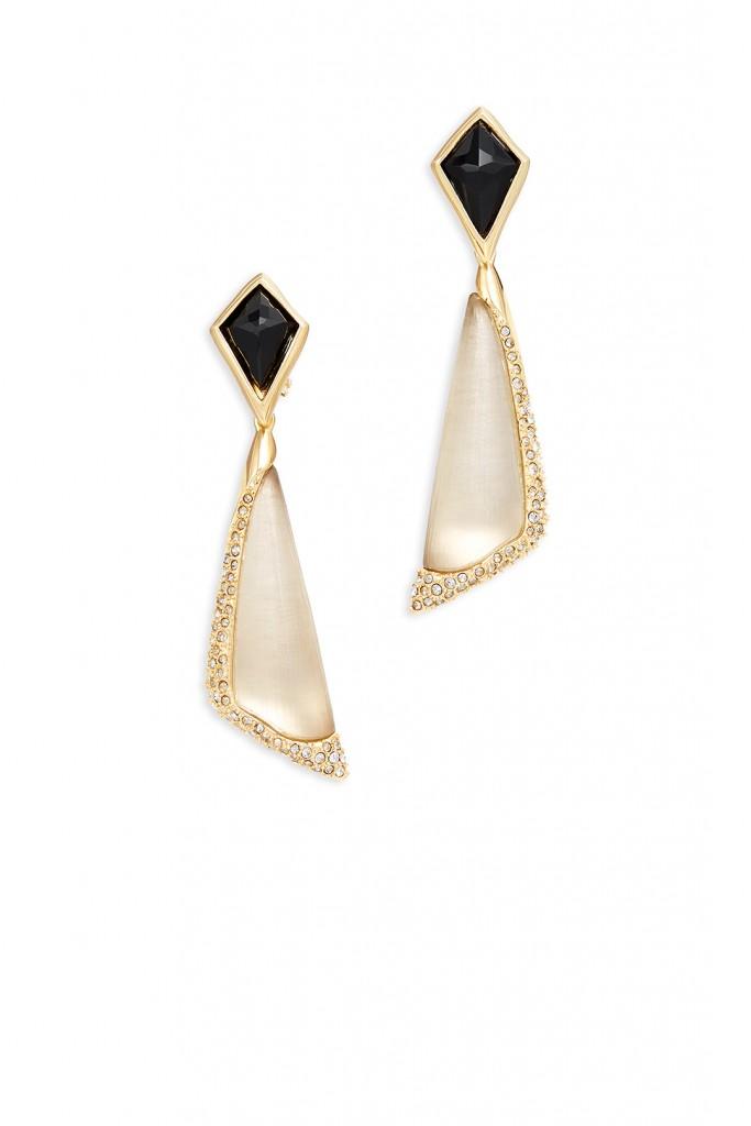 Encrusted Pave Earrings