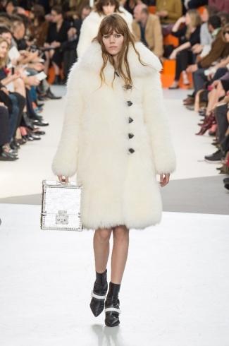 Louis Vuitton1