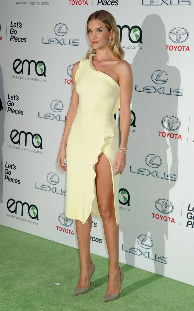 Rosie HW in Cushnie et Ochs Dress1