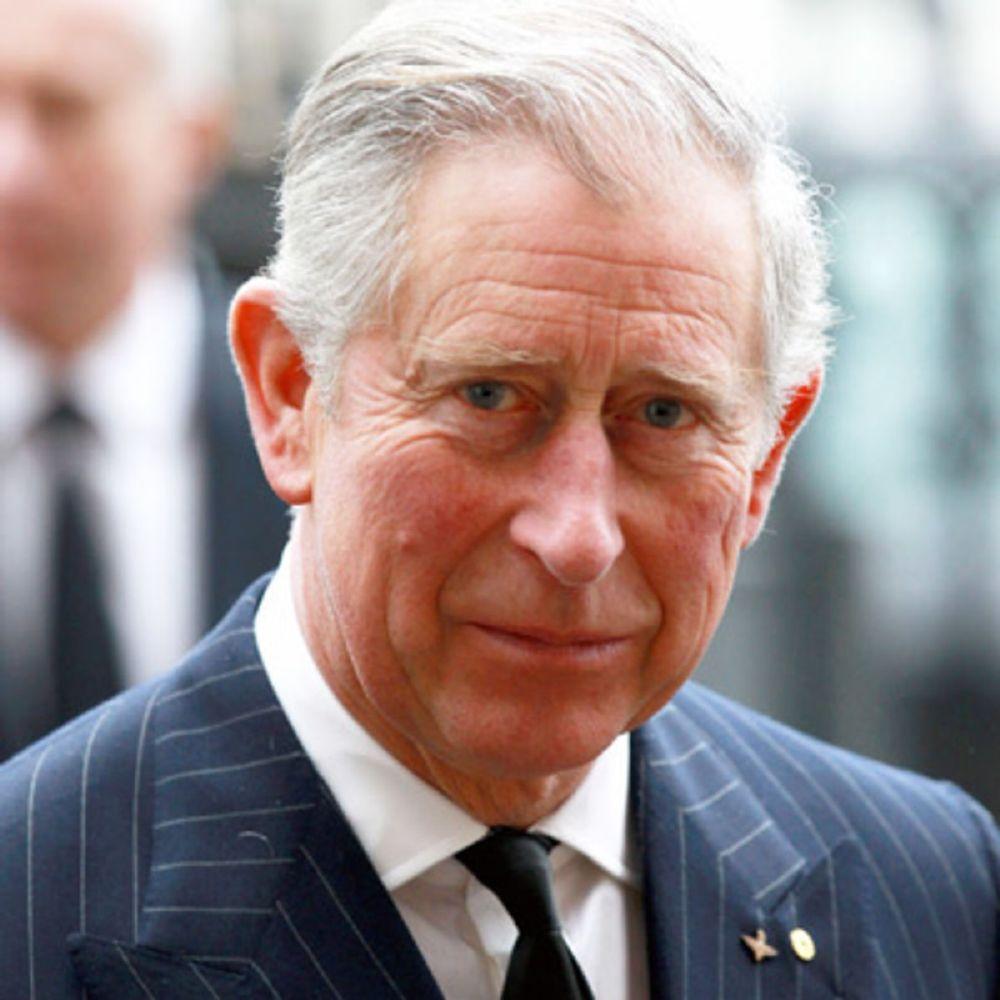 الأمير تشارلز  (3)