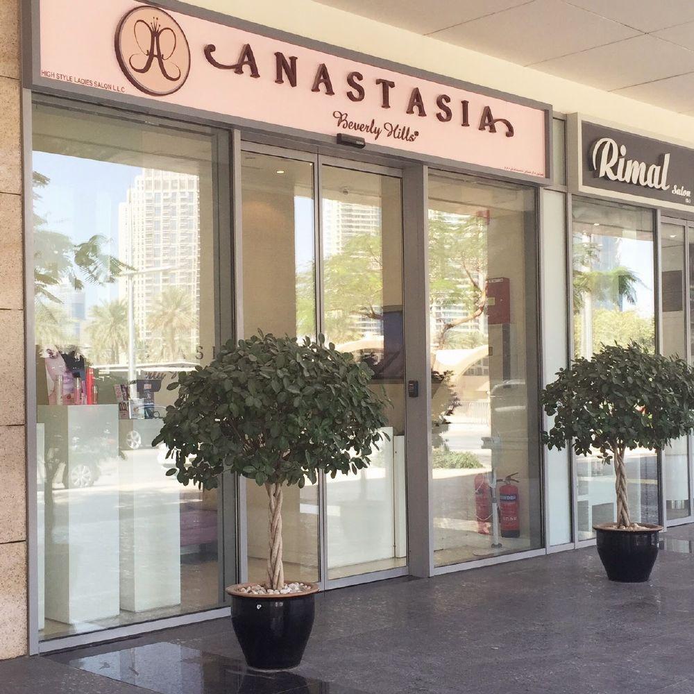 resized_Anastasia Beverly Hills (1)