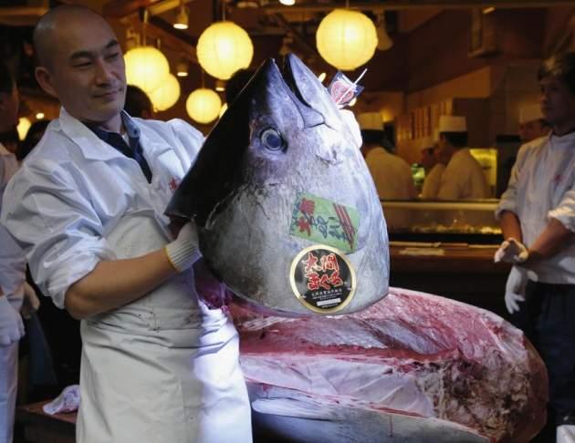 سمكة تونة بـ 117 ألف دولار أمريكي (2)