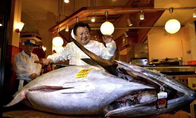 سمكة تونة بـ 117 ألف دولار أمريكي (4)