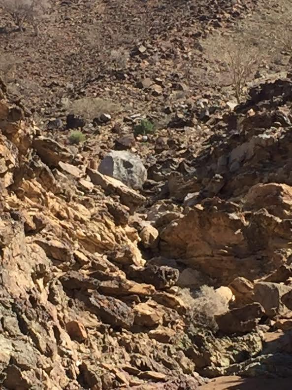 صخرة في الإمارات  (1)
