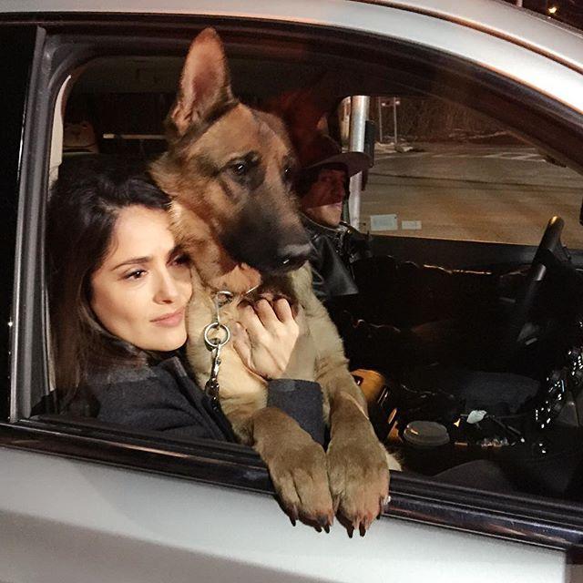 سلمى حايك مع كلبها موزارت
