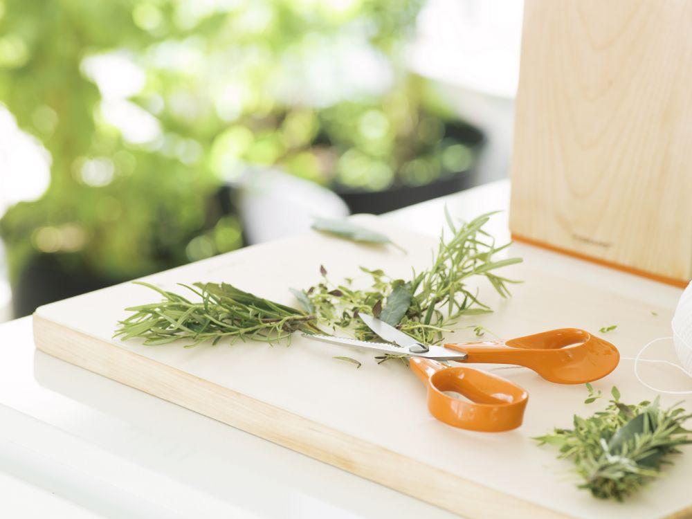 resized_Fiskars_Environmental_Classic_Kitchenscissors_Rosemary_new