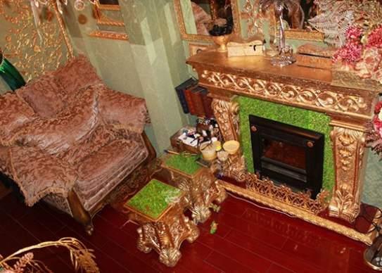 شقة مطلية بالذهب (4)