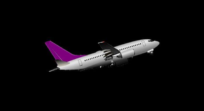 resized_0004-طائرات-Avions-Planes