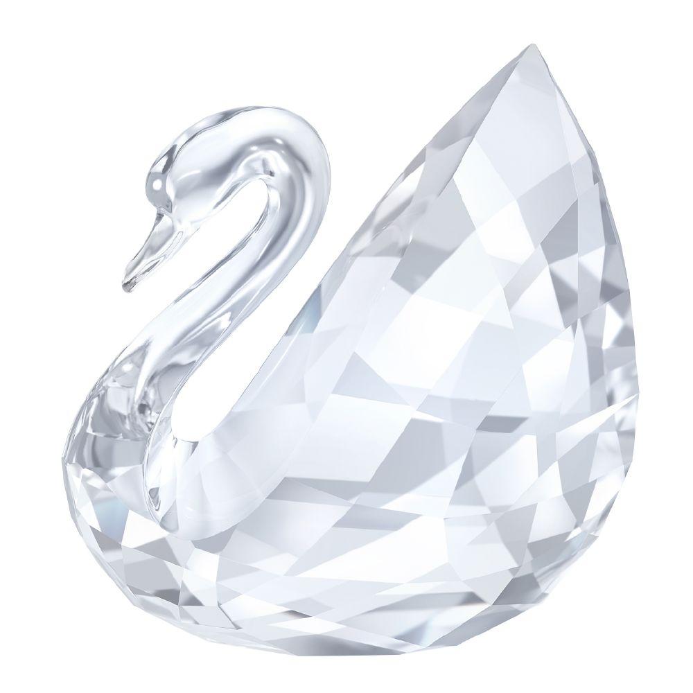 resized_resized_swan