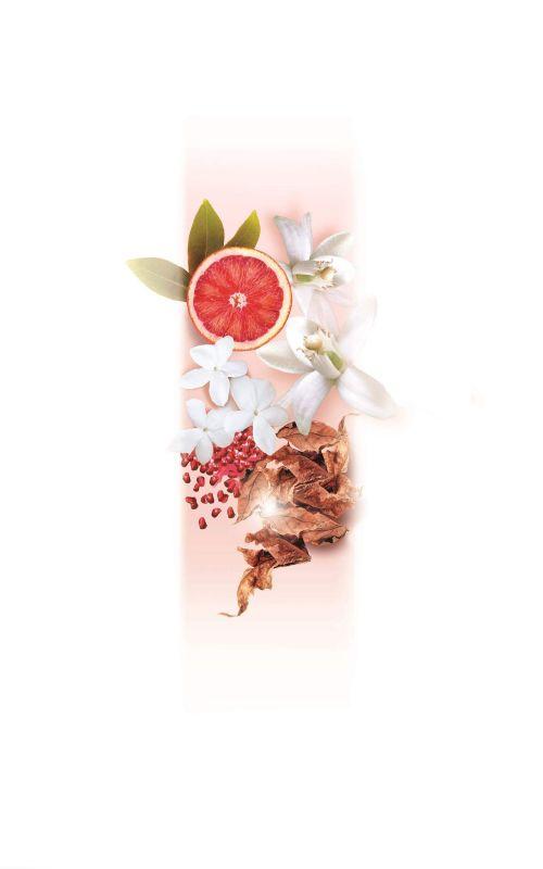 مجموعة ELIE SAAB Le Parfum تضم تشكيلة من أزهار الفل البيضاء وزهر الليمون المنعش