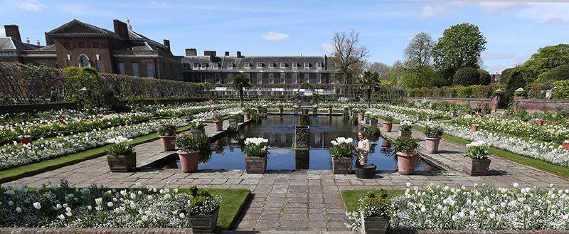 افتتاح حديقة زهور الأميرة ديانا في قصر كنسينغتون