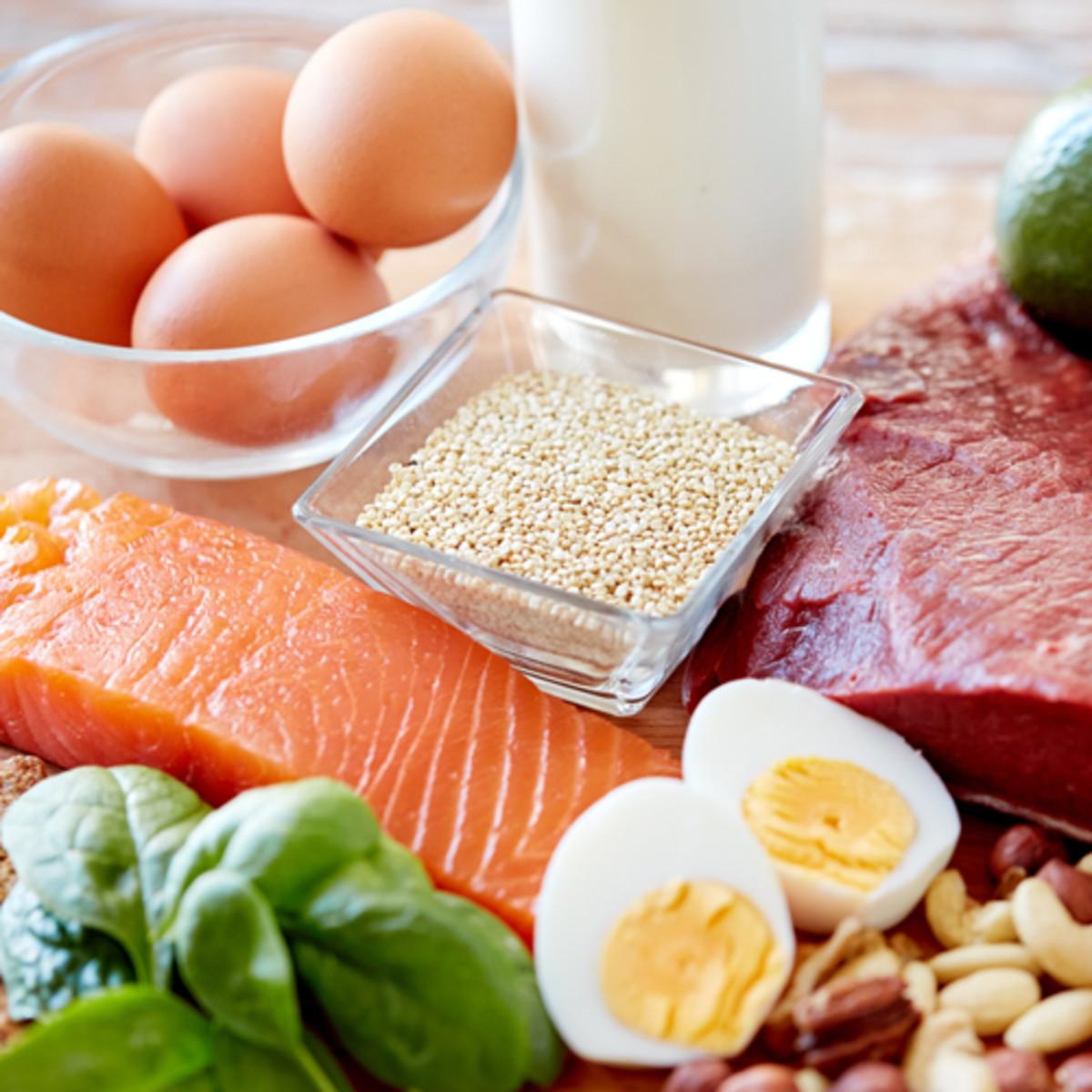 رجيم البروتين