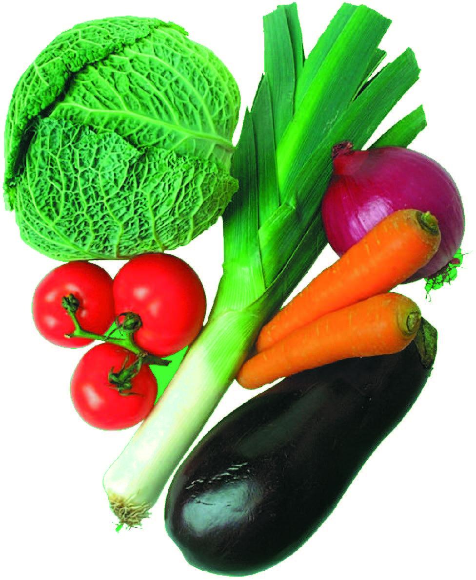 وصفات نباتية