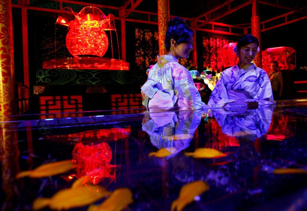 اليابان-تعرض-8000-سمكة-ذهبية-بعرض-الاسماك