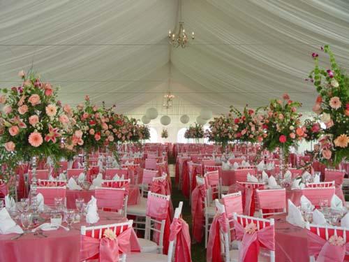حفلات-زفاف