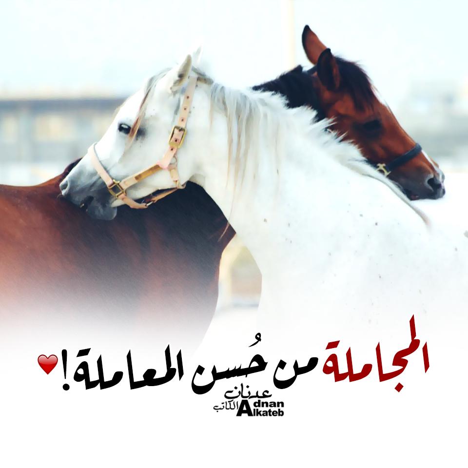 المجاملة من حسن المعاملة كلمات عدنان الكاتب