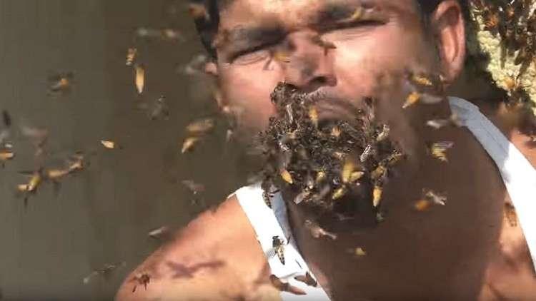 بالفيديو.. رجل يأكل آلاف النحلات الحية دفعة واحدة بطريقة غريبة !