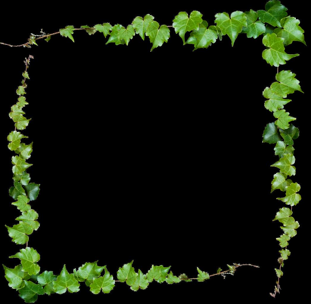 أجمل ثيمات العرسان بفروع الشجر الخضراء