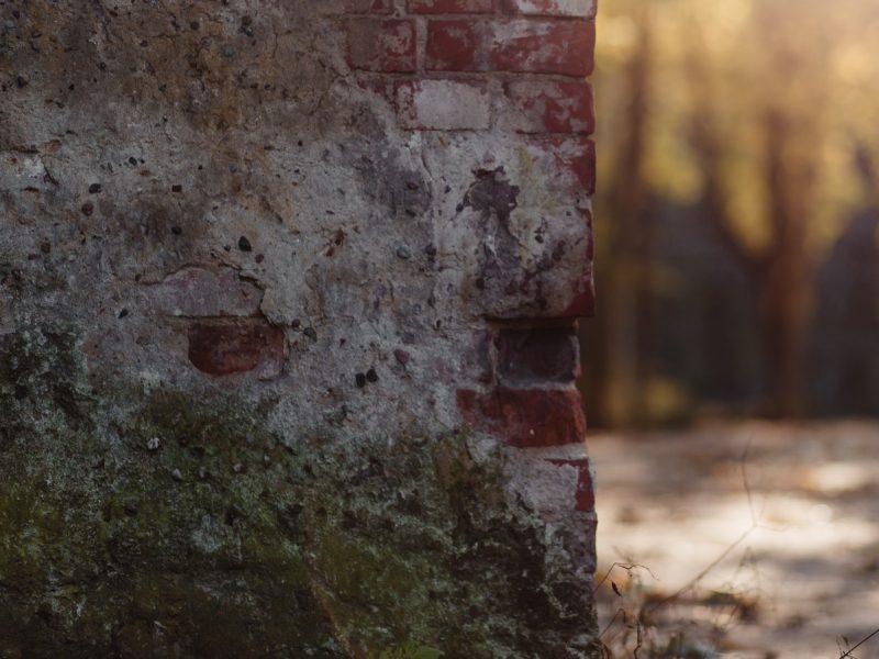زوجان يكتشفان كنز ثمين عبر إعادة ترميم منزلهم