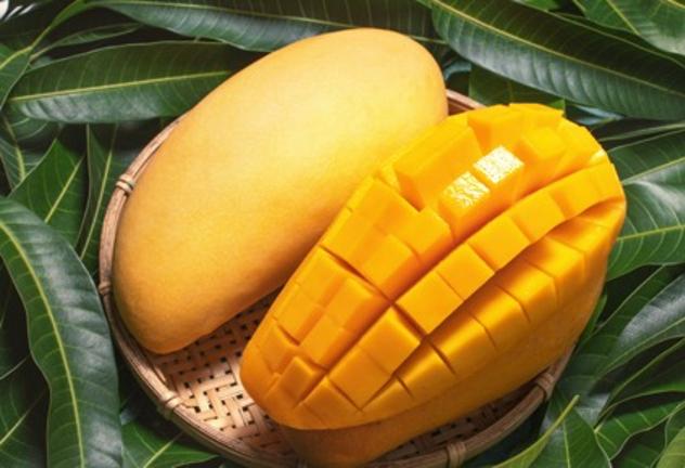 المانجو هي الفاكهة الأكثر بحثاً على منصة إن آر تي سي فريش خلال فصل الصيف